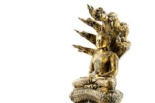Free Buddha Image With Naga Royalty Free Stock Image - 19190856