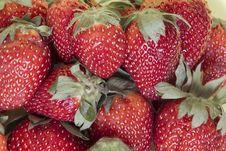 Free Strawberries Stock Photos - 19193413