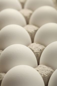 Free Eggs Royalty Free Stock Photography - 19194987