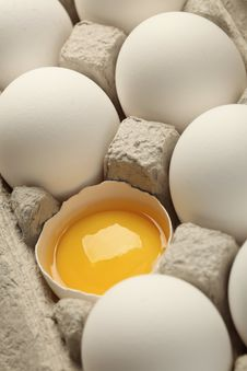 Free Eggs Stock Photos - 19195013
