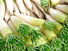 Free White Chinese Radish Royalty Free Stock Image - 19196826