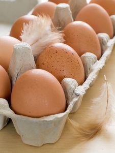 Free Eggs Stock Photos - 19197413