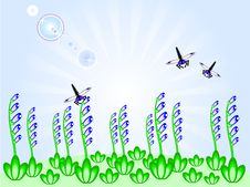 Free Blue Flowers And Dragonflies Royalty Free Stock Image - 19199526