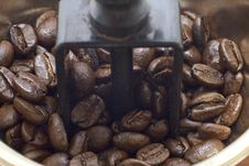 Free Coffee Beans In Grinder Royalty Free Stock Photos - 1921098