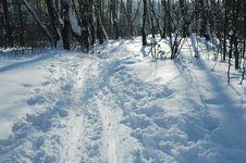 Ski-track Royalty Free Stock Photo