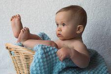 Free Basket Baby Stock Image - 1924741