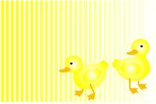 Free Yellow Ducks Stock Image - 1926681