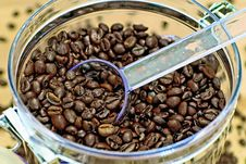 Free Coffee Beans Stock Images - 1927114