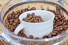 Free Coffee Beans Stock Photography - 1927172