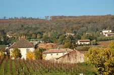 Free Vineyard In Front Of Farm In Autumn Stock Photography - 1928842
