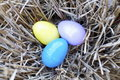 Free Nest Of Easter Eggs Royalty Free Stock Photos - 19202998