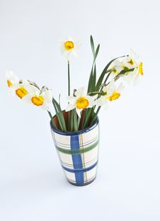 Free Narcissus In Vase Royalty Free Stock Photography - 19200187