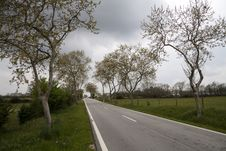 Free Road Through The Countryside Royalty Free Stock Images - 19201589