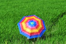 Free Colorful Umbrella Royalty Free Stock Images - 19202749