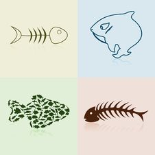 Free Collection Of Fishes Stock Photography - 19203162