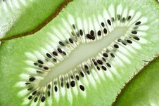 Back Projected Kiwi Slice. Royalty Free Stock Photography
