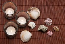 Free Candles With Seashells Royalty Free Stock Photography - 19205307