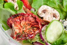 Free Salad With Dried Tomatoes, Champignon And Onion. Royalty Free Stock Photo - 19205705