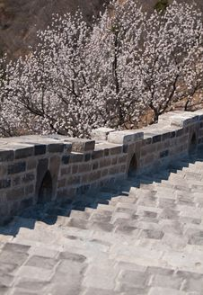 Free Great Wall, China Royalty Free Stock Images - 19209989