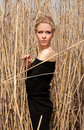 Free Young Beautiful Slim Girl In The Reed Stock Image - 19211521
