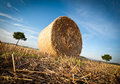 Free Hay Bale On The Late Afternoon Royalty Free Stock Image - 19214066