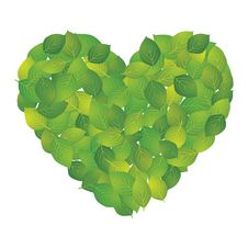 Free Leaf Of The Heart Stock Photo - 19211130