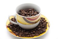 Free Coffee Beans In The Coffee Cup Stock Photo - 19211730