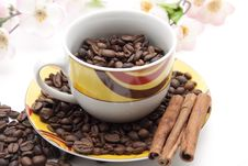 Free Coffee Beans With Cinnamon Pole Royalty Free Stock Photography - 19211787