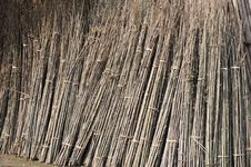 Free Bamboo Materials Royalty Free Stock Image - 19215936