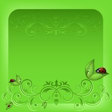 Free Ladybird On Green Royalty Free Stock Photography - 19219047