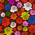 Free Seamless Roses Color Pattern Stock Photo - 19229440