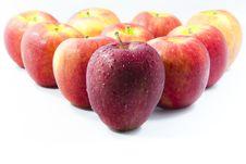 Free Apple Stock Image - 19221101
