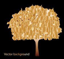 Free Abstract Gold Tree Stock Photos - 19221313