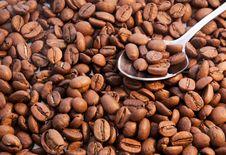 Free Coffee Beans Closeup Stock Photos - 19225053