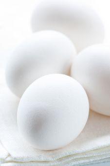 Free Eggs Stock Photos - 19225313