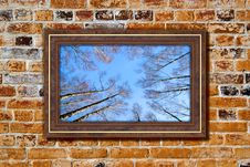 Free Frame To The Nature Stock Photos - 19225643