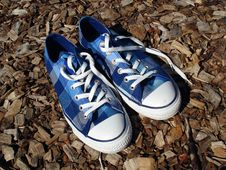 Free Blue Sneakers Royalty Free Stock Photography - 19226567