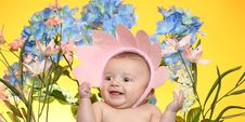 Free Little Girl And Flowers Stock Photography - 19226782