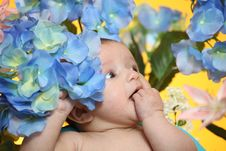 Free Little Girl And Flowers Stock Photo - 19226790