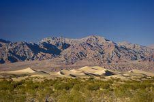 Vast Desert & Sand Dunes Royalty Free Stock Images