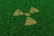 Free Radiation Symbol From Thatch On Green Grass Stock Photo - 19229970