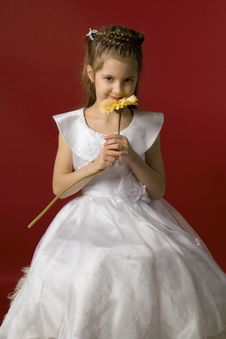 Little Smiling Girl With Flower Royalty Free Stock Image