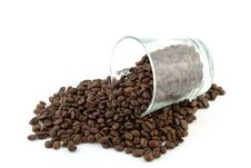 Free Scattered Roasted Coffee Beans Stock Image - 19233201