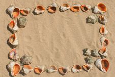 Frame Maked Of Shells. Stock Image