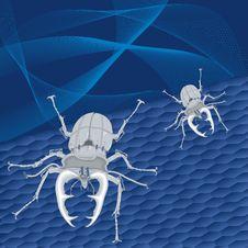 Free Steel Beetles Royalty Free Stock Images - 19236539