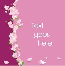 Floral Card In Pink Stock Image
