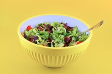 Free Salad In A Bowl Of Yellow Stock Image - 19236781