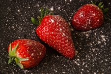 Free Strawberries With Icing Sugar Royalty Free Stock Photography - 19238037