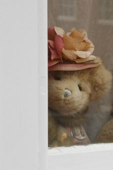 Free Teddy Bear Stock Photography - 19238262