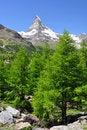 Free Matterhorn Stock Photo - 19241190